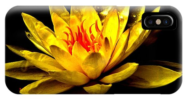 A Water Lily IPhone Case