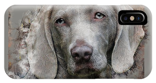 A Weimaraner IPhone Case
