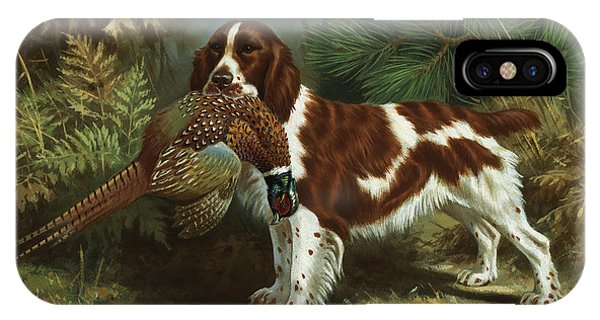 A Welsh Springer Spaniel Holds A Dead IPhone Case
