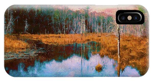 A Wilderness Marsh IPhone Case