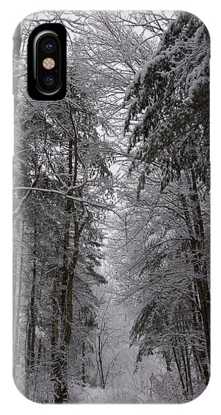 A Winters Path IPhone Case