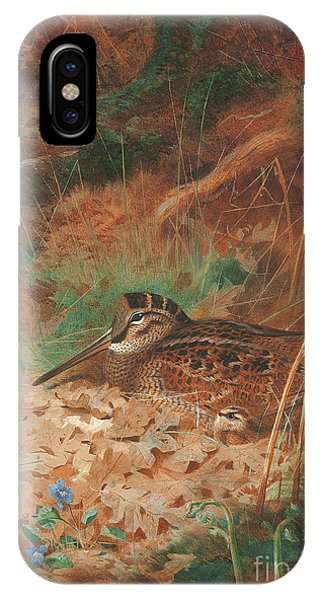 Woodcock iPhone Case - A Woodcock And Chick In Undergrowth by Archibald Thorburn