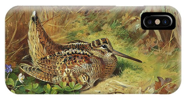 Woodcock iPhone Case - A Woodcock And Chicks by Archibald Thorburn