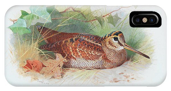 Woodcock iPhone Case - A Woodcock Resting by Archibald Thorburn