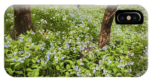 A Woodland Carpet Of Blue IPhone Case