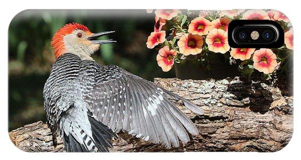 A Woodpecker Conversation IPhone Case