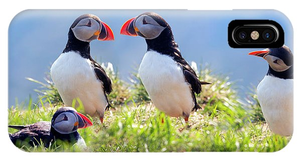 A World Of Puffins IPhone Case