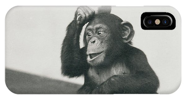 A Young Chimpanzee Playing With A Brush IPhone Case