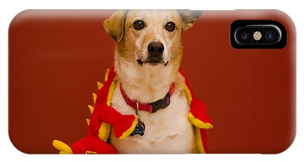 Abbie And Dragon Toy IPhone Case