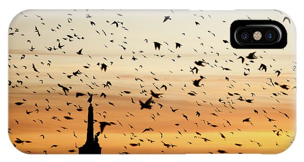 Aberystwyth Starlings At Dusk Flying Over The War Memorial IPhone Case