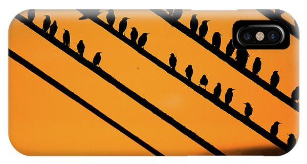 Aberystwyth Starlings At Dusk IPhone Case