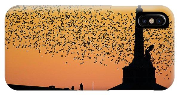 Aberystwyth Starlings IPhone Case