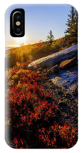 Blueberry iPhone Case - Above Bar Harbor by Chad Dutson