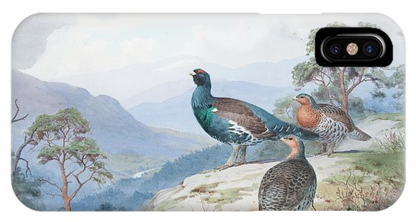 Mallard iPhone Case - Above The Forest, Capercaillie And Grouse by John Cyril Harrison