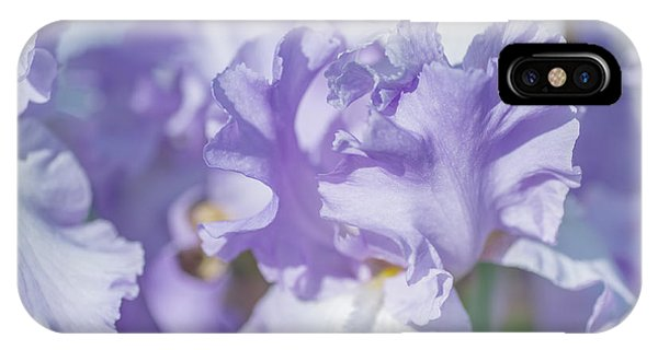 Absolute Treasure Closeup. The Beauty Of Irises IPhone Case