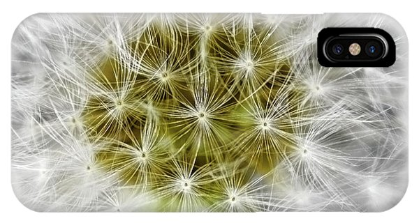 Abstract Nature Dandelion Floral Maro White And Yellow A1 IPhone Case