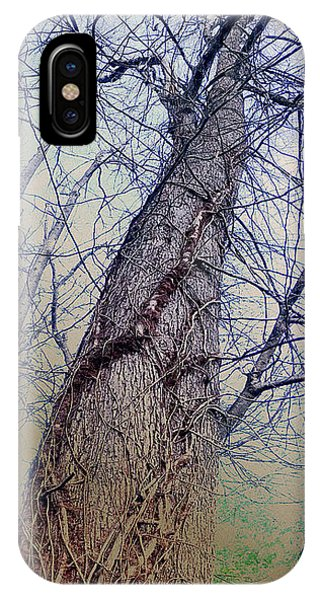 Abstract Tree Trunk IPhone Case
