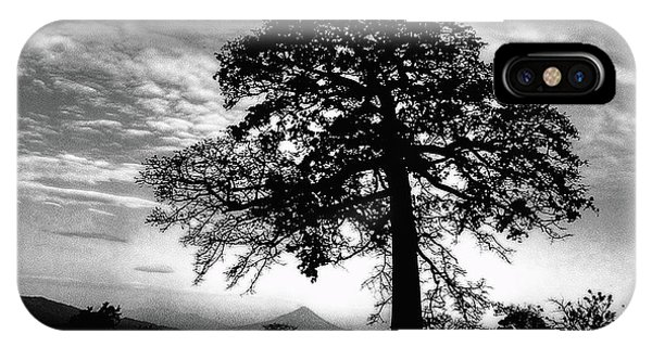 IPhone Case featuring the photograph Acacia And Volcano Silhouetted by Wayne King