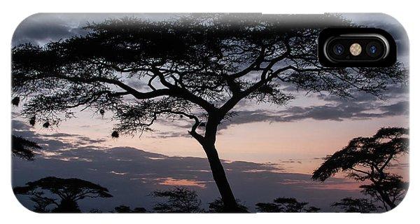 Acacia Trees Sunset IPhone Case