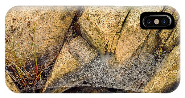 Granite iPhone Case - Acadia Granite With Spiderweb And Grasshopper Photo by Peter J Sucy