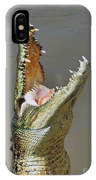 Crocodile iPhone Case - Adelaide River Crocodile by Bill  Robinson