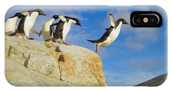 Mp iPhone Case - Adelie Penguins Jumping by Yva Momatiuk John Eastcott