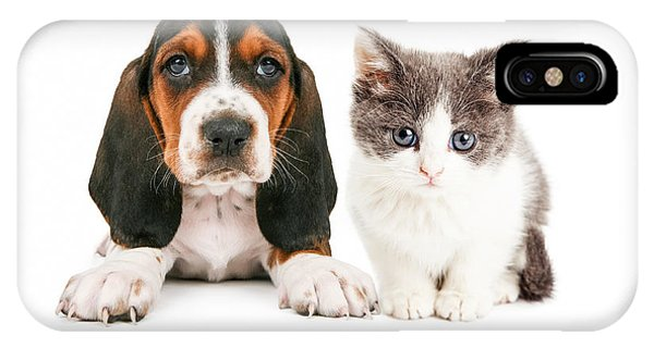 Adorable Basset Hound Puppy And Kitten Sitting Together IPhone Case