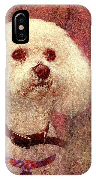 Adoration - Portrait Of A Bichon Frise  IPhone Case