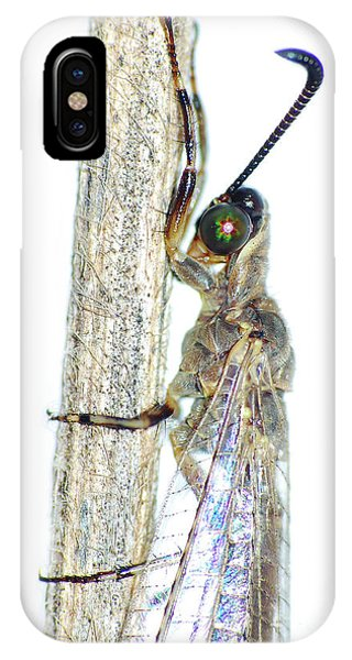 Adult Ant Lion IPhone Case