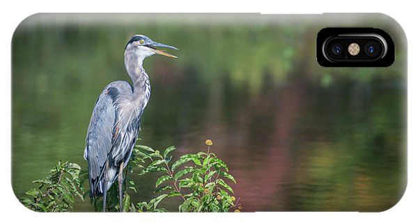 IPhone Case featuring the photograph Advice From A Great Blue Heron by Cindy Lark Hartman