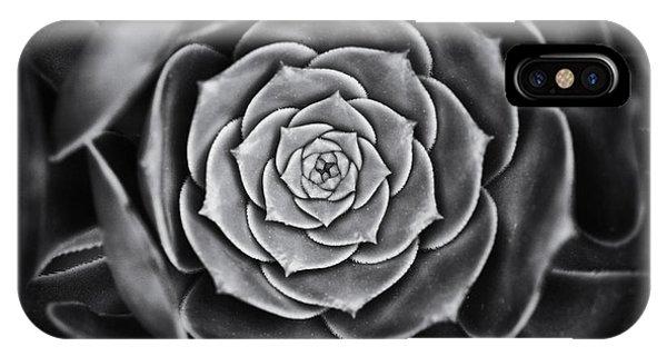 Succulent iPhone Case - Aeonium Arboreum by Tim Gainey