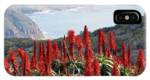 African Aloe And False Bay IPhone Case