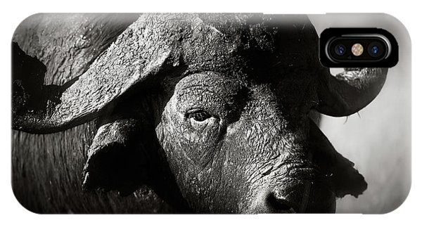 Head And Shoulders iPhone Case - African Buffalo Bull Close-up by Johan Swanepoel
