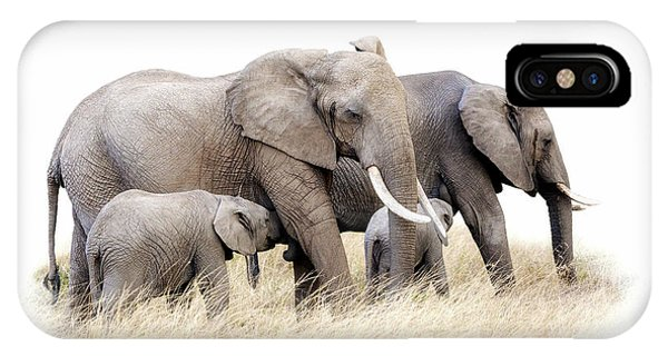 iPhone Case - African Elephant Group Isolated by Jane Rix