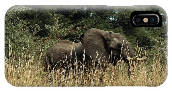 IPhone Case featuring the photograph African Elephant In Tall Grass by Karen Zuk Rosenblatt