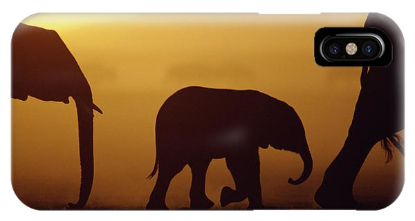 East Africa iPhone Case - African Elephant Loxodonta Africana by Karl Ammann