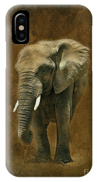 African Elephant With Textures IPhone Case