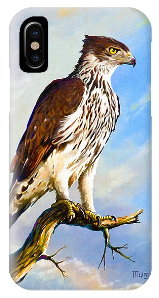 African Hawk Eagle IPhone Case