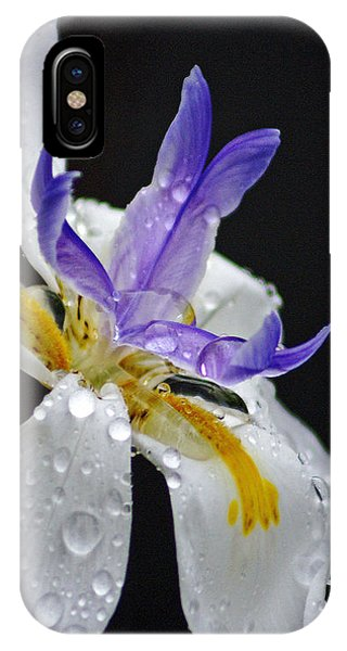 iPhone Case - African Iris by Holly Kempe
