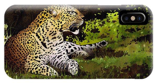 iPhone Case - African Leopard by Paul Dene Marlor