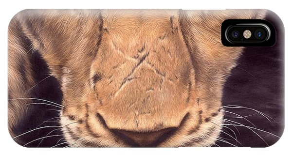 African Lion Art iPhone Case - African Lioness Face by Rachel Stribbling