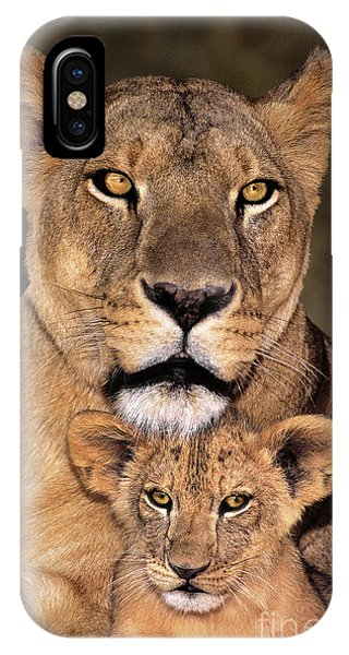 IPhone Case featuring the photograph African Lions Parenthood Wildlife Rescue by Dave Welling