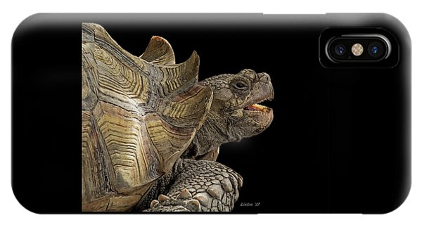 African Spurred Tortoise IPhone Case