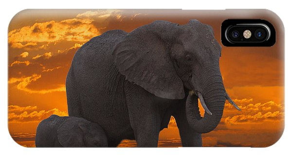African Sunset-k IPhone Case