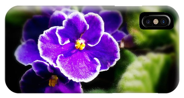 Close Up Floral iPhone Case - African Violet by Ms Judi