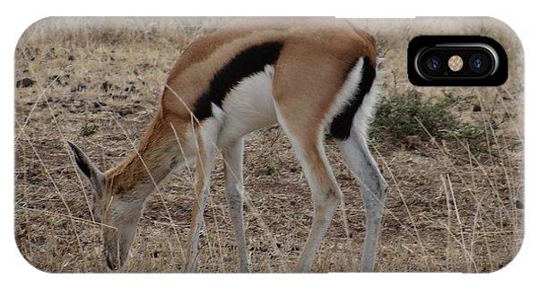 African Wildlife 4 IPhone Case