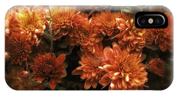 Fall Flowers iPhone Case - Afterglow by Jessica Jenney