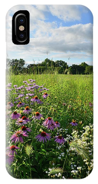 Afternoon In Moraine Hills State Park IPhone Case