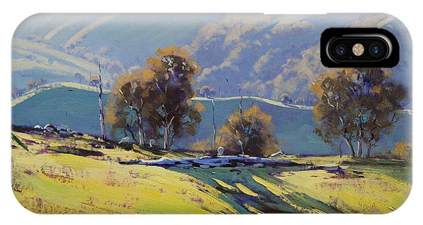 Realism iPhone Case - Afternoon Light Lithgow by Graham Gercken