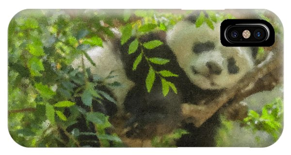 Afternoon Nap Baby Panda IPhone Case
